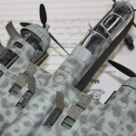 VASHO_2012_He219_closeup_Tamiya_48_0004
